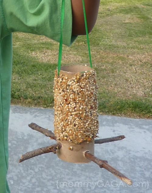 DIY toilet paper roll bird feeder craft - These are great to hang in your yard and watch the birds come and enjoy some seeds!