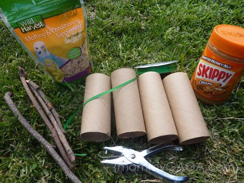 How To Make A Toilet Paper Roll Bird Feeder Craft - Honey + Lime