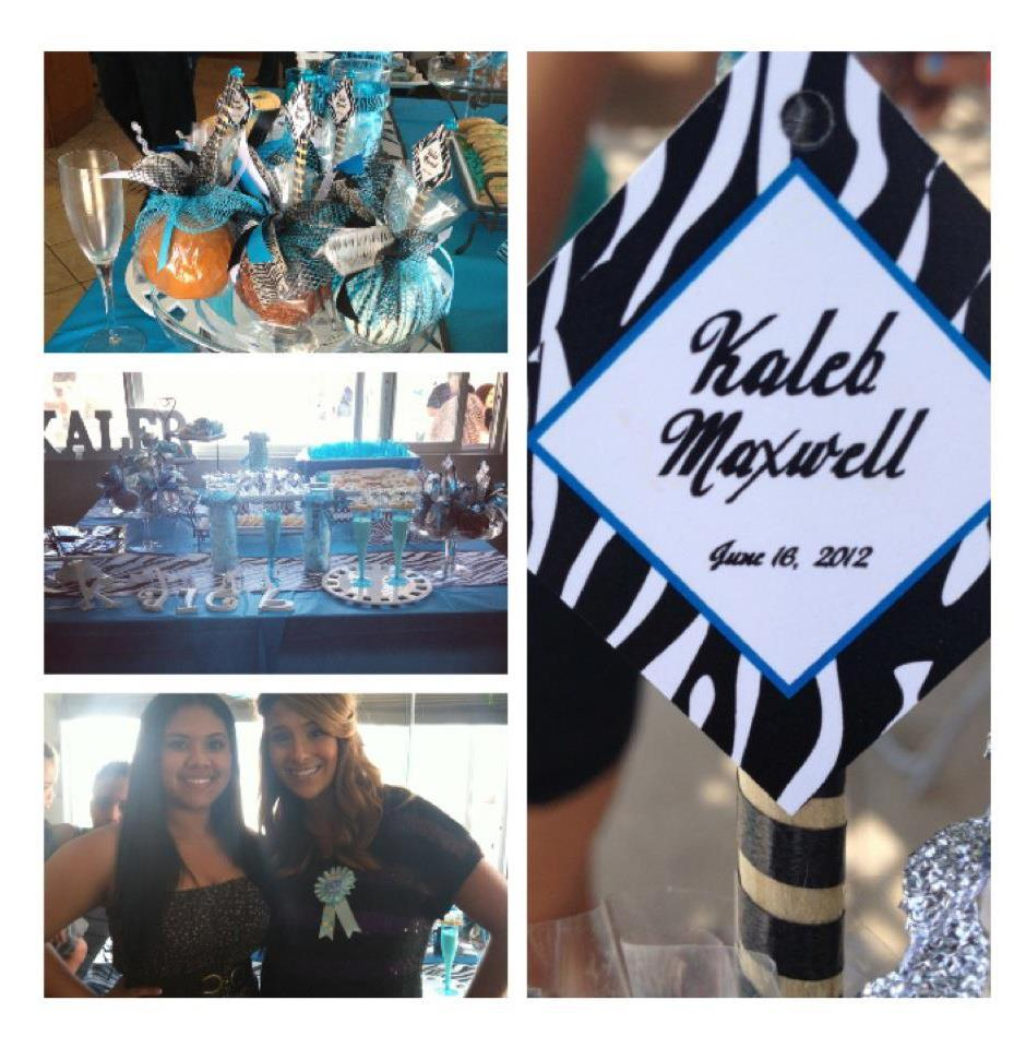 Boy Blue Zebra Baby Shower