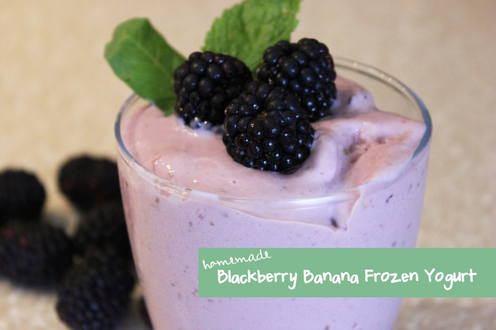 Homemade Blackberry Banana Frozen Yogurt