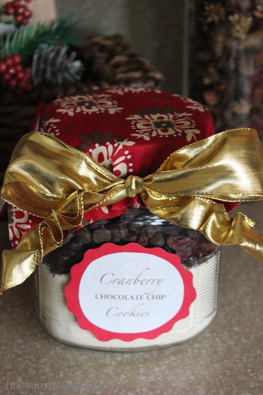 Cranberry Chocolate Chip Christmas Cookie Gift