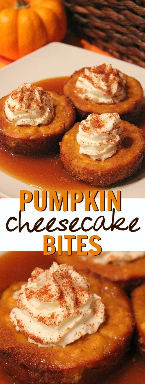 Pumpkin caramel cheesecake bites dessert recipe - this is such a delicious Fall pumpkin dessert idea! pumpkin cheesecake bites | pumpkin cheesecake cups | caramel pumpkin cheesecake | pumpkin cheesecake cupcakes | pumpkin dessert | honeyandlime.co