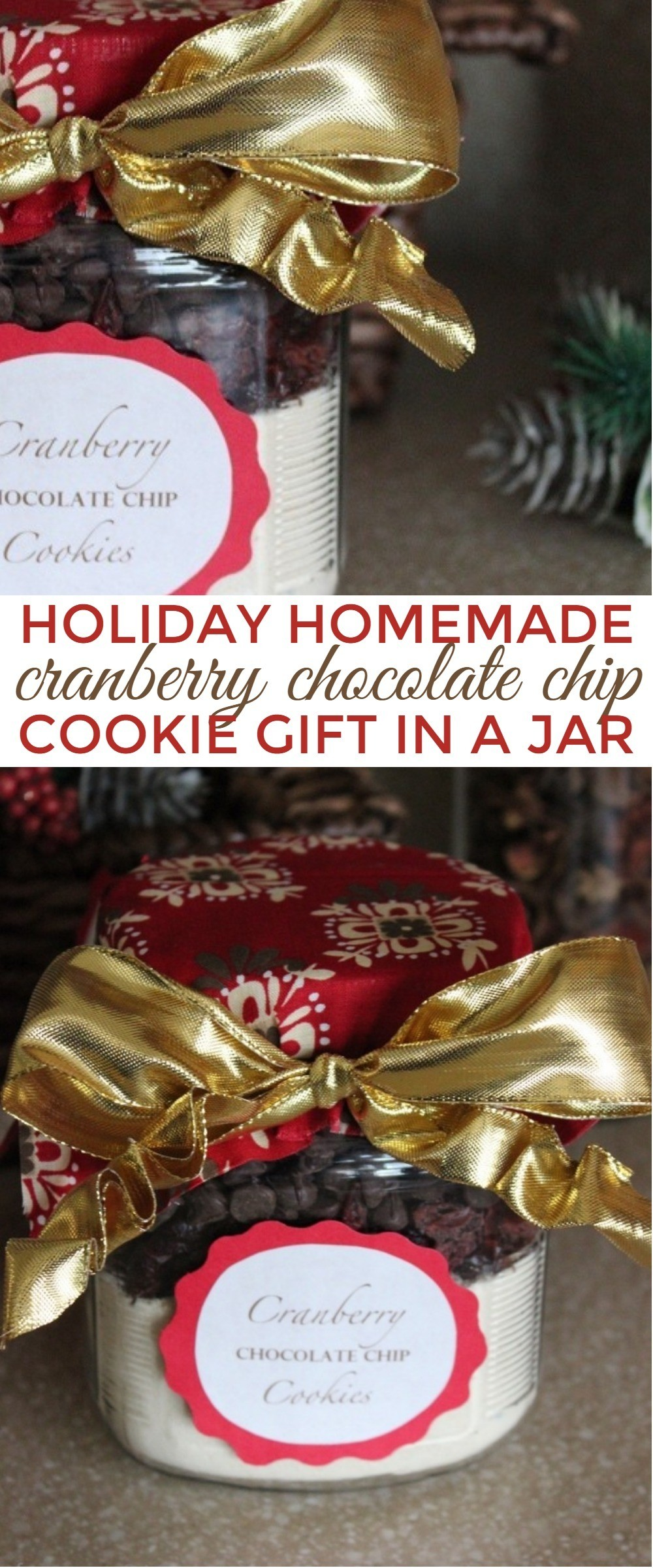 Holiday Cranberry Chocolate Chip Homemade Christmas Cookie Gift Jar