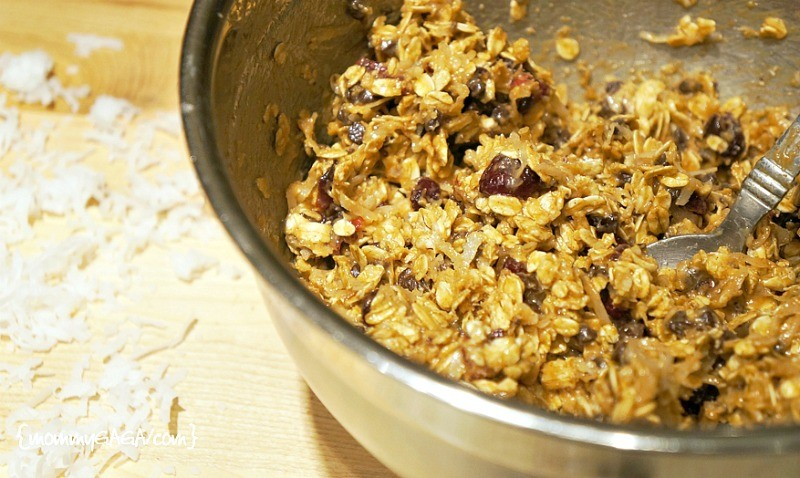 Cranberry chocolate chip oat energy bites recipe mixture