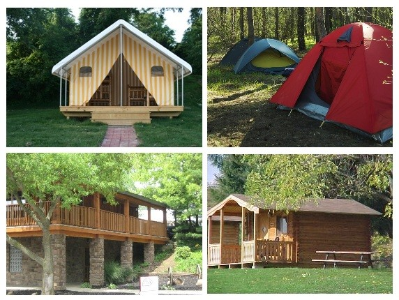 Camping cabins and tents, Clays park resort