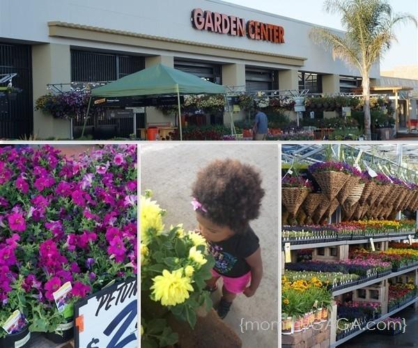 Home depot garden center projects