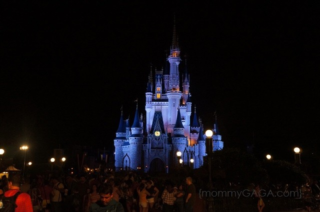 Walt Disney World Magic Kingdom Castle at Night