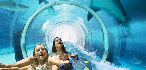 Under water slide, lots of family friendly attractions at Atlantis Resort in Paradise Cove, Nassau, Bahamas