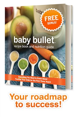 Make homemade baby food in a snap with baby bullet honey lime baby food recipe book baby bullet forumfinder Gallery