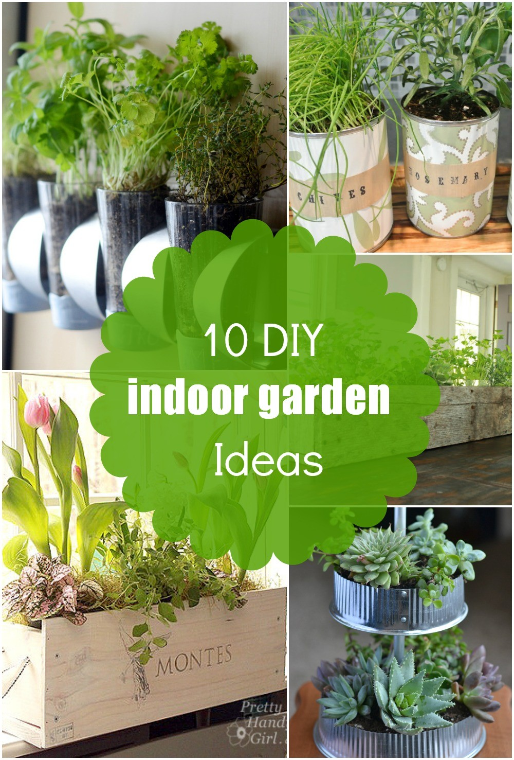 10 DIY Easy Indoor Herb Garden Ideas