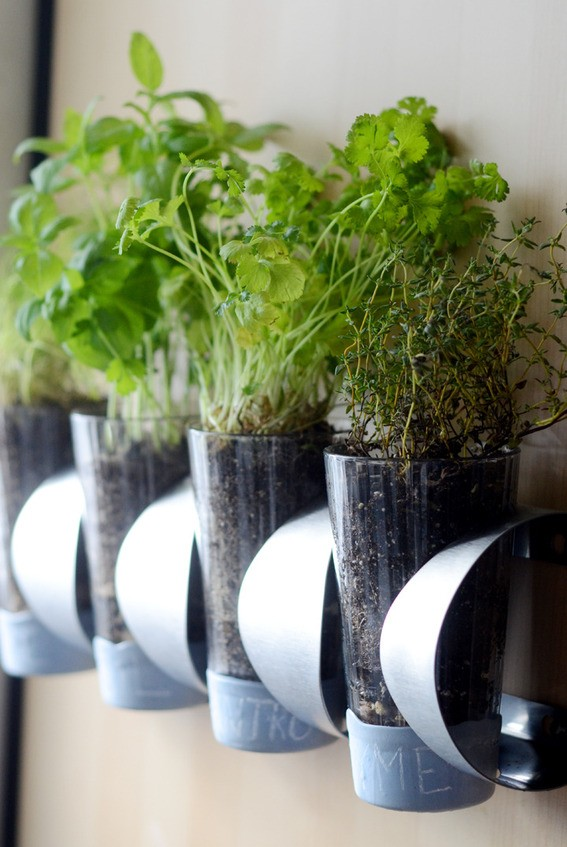 Indoor IKEA Herb Garden, Curbly