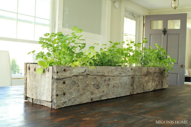 Kitchen Herb Garden in Wood Box Planter, Migonis Home