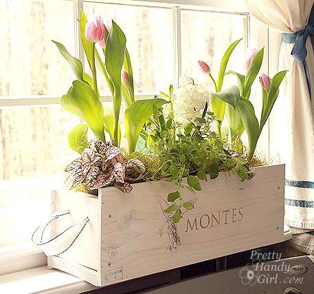 10 diy indoor herb garden ideas and planters - honey + lime