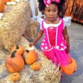 Girl choosing a pumpkin at the Boomont park pumpkin patch, Belmont Park