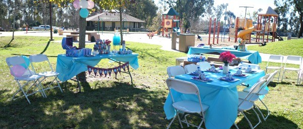 Frozen Birthday Party Ideas, Tables set up at a park