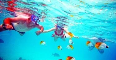 Koka Lagoon Cruises, snorkel in Muri Lagoon