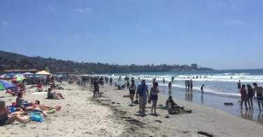 La Jolla Shores Beach on a busy summer day