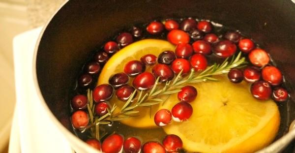 Simmering Cranberry Orange Stove Top Potpourri