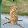 easy homemade bird feeder craft
