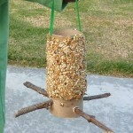 Easy DIY homemade bird feeder craft using toilet paper rolls
