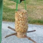 Easy DIY homemade bird feeder craft using toilet paper rolls