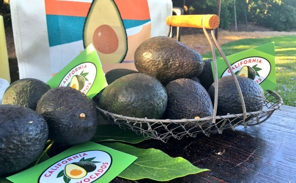 Avocado decorations, Dinner En Green with California Avocados