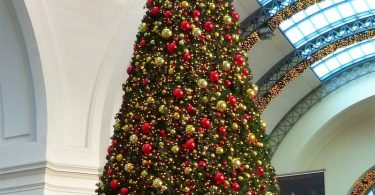 giant-christmas-tree