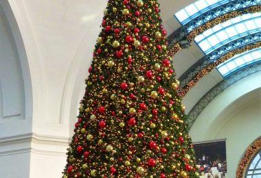 giant-christmas-tree