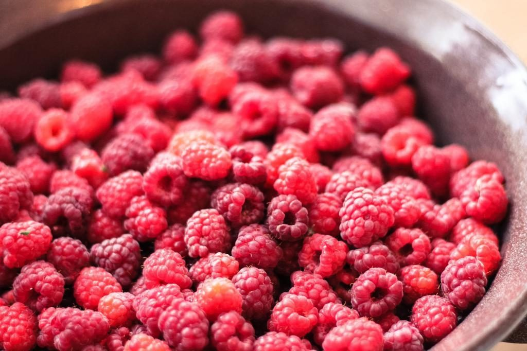 fresh raspberries fruit