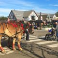 Horse drawn trolley in Solvang, CA