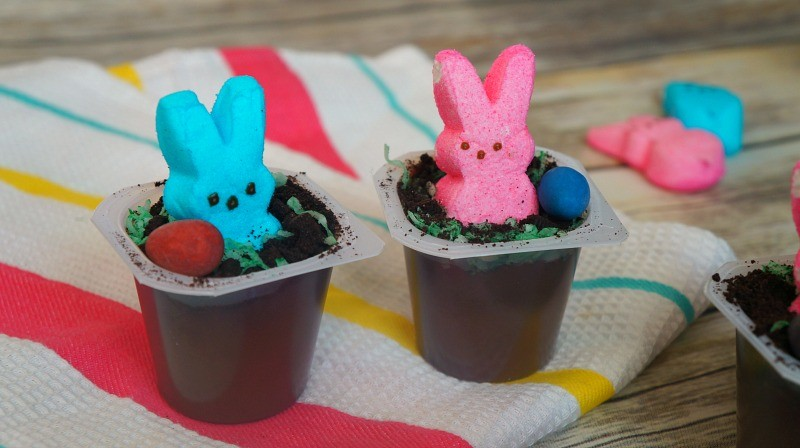 Chocolate pudding Easter dirt cups with marshmallow bunnies