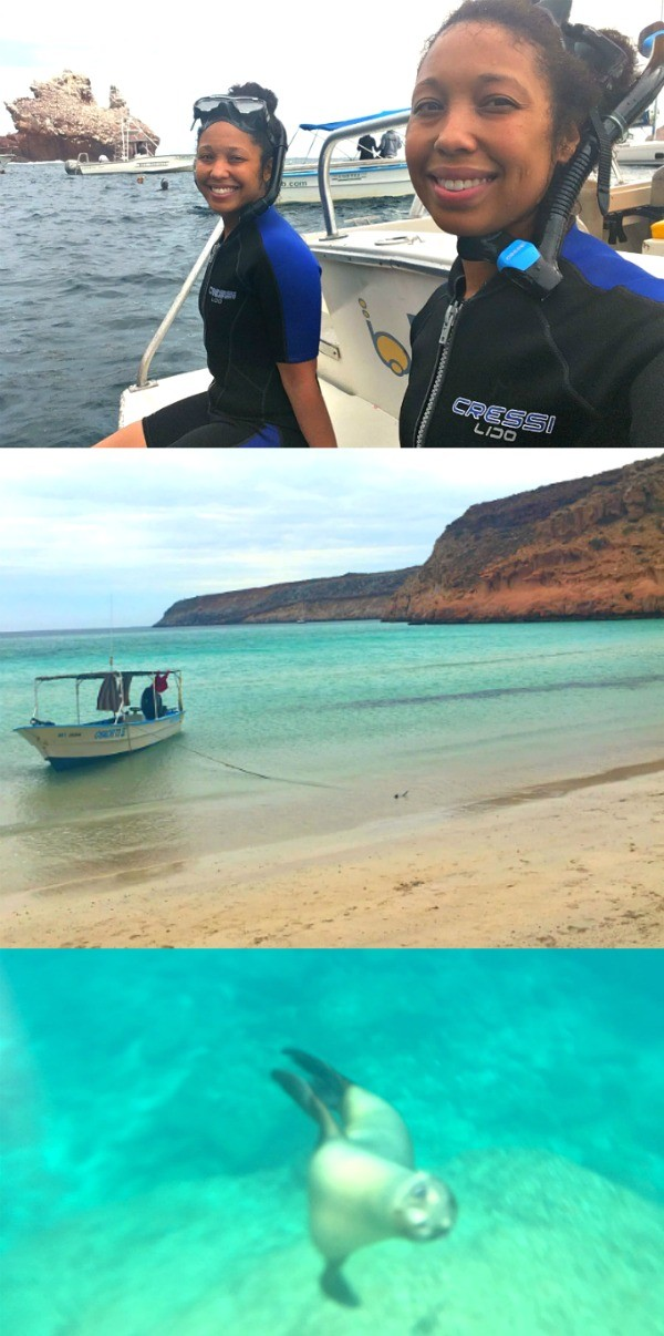 Snorkeling In La Paz, Mexico- Swim With Sea Lions at Isla Espiritu Santo!