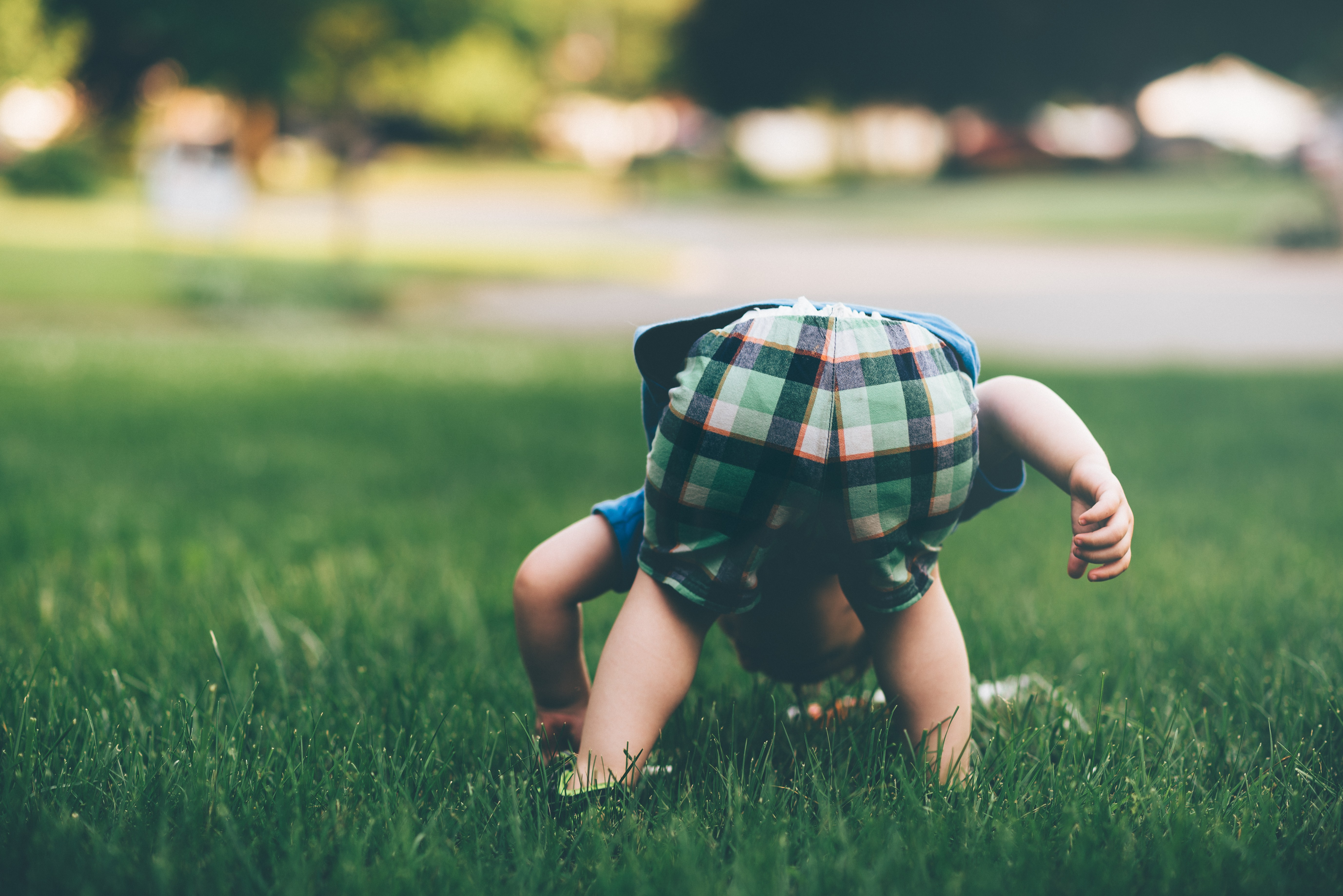 kid baby playing in the grass