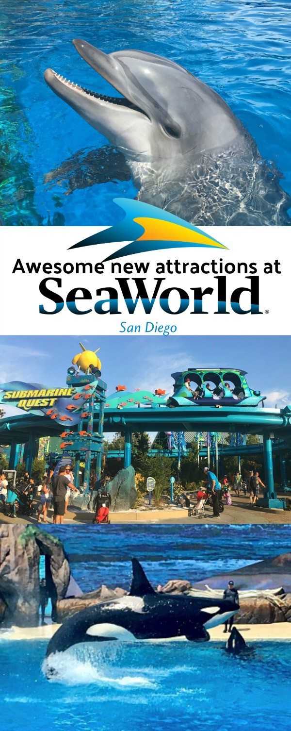 Discover Our Favorite New Attractions At Sea World San Diego This Summer!