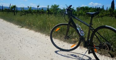Bike riding through the vineyards in Tuscany, Italy