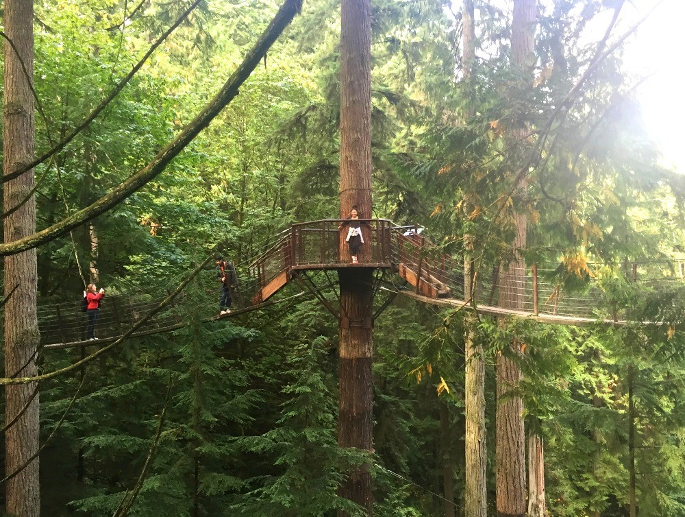 Treetops Adventure at Capilano Suspension Bridge Park Vancouver