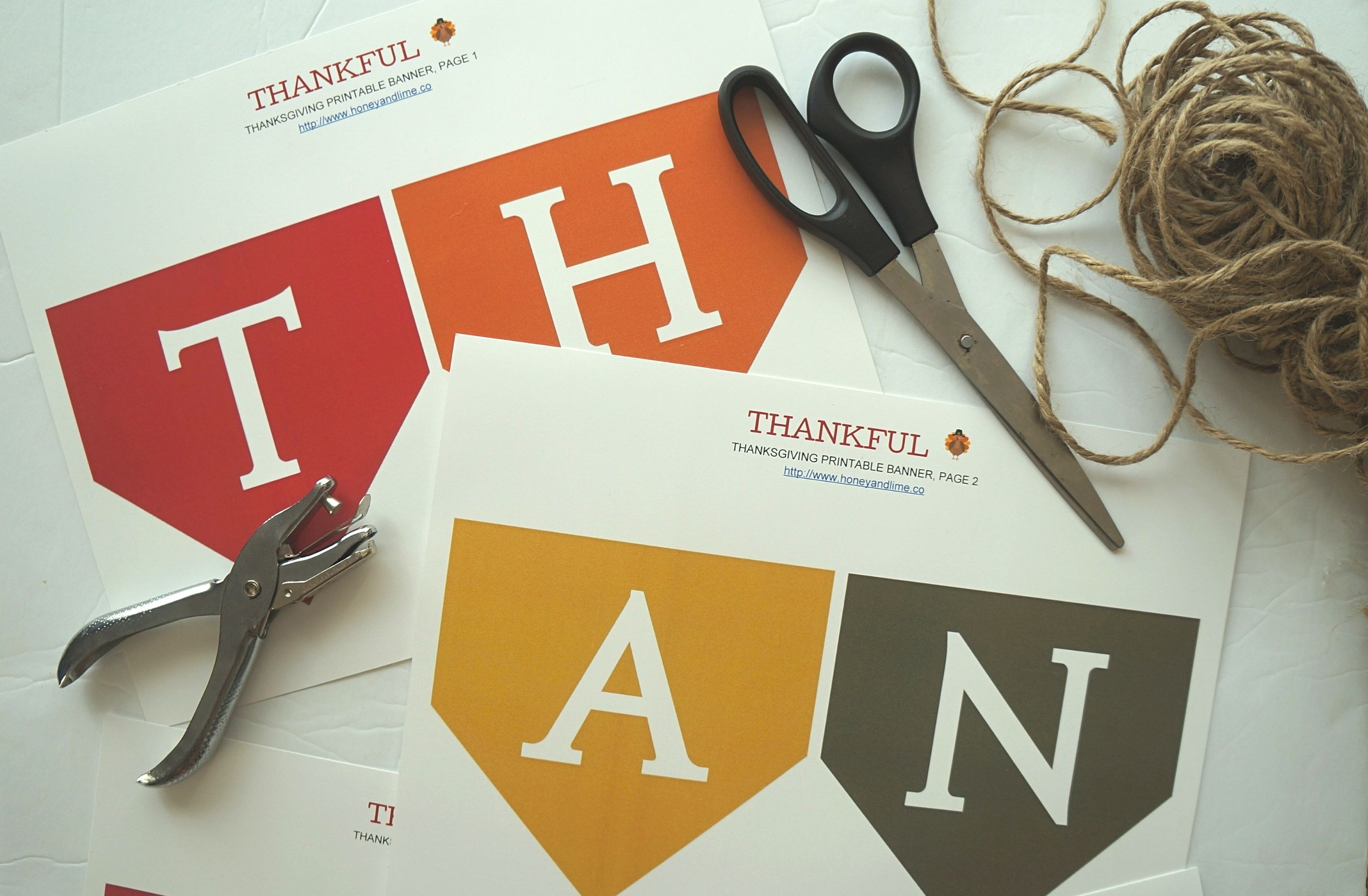 image relating to Printable Thanksgiving Banner referred to as We Appreciate This Festive Grateful No cost Printable Thanksgiving