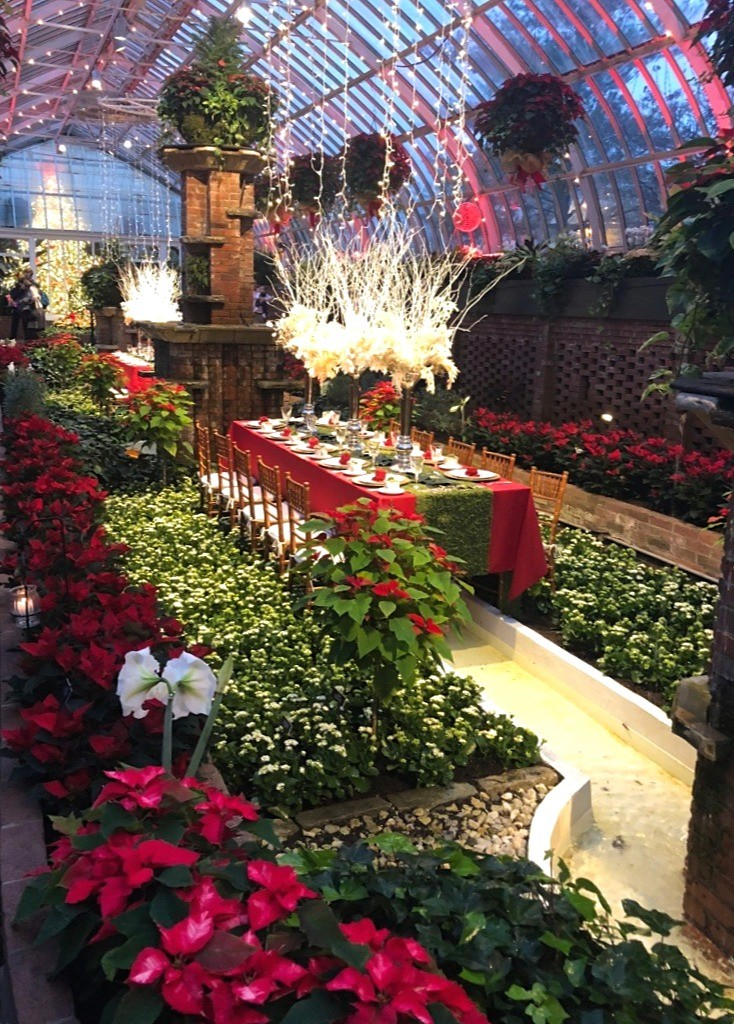 Phipps Conservatory Winter Garden things to do in Pittsburgh for the holidays