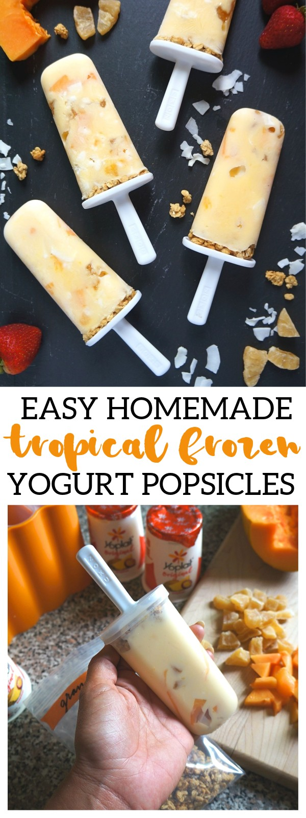 Cool Off With These Easy Homemade Tropical Frozen Yogurt Popsicles!