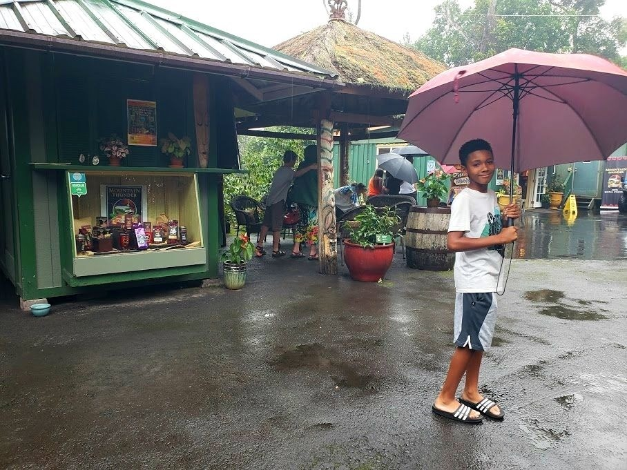 Rainy day in the mountains of Kona at Mountain Thunder Coffee Plantation